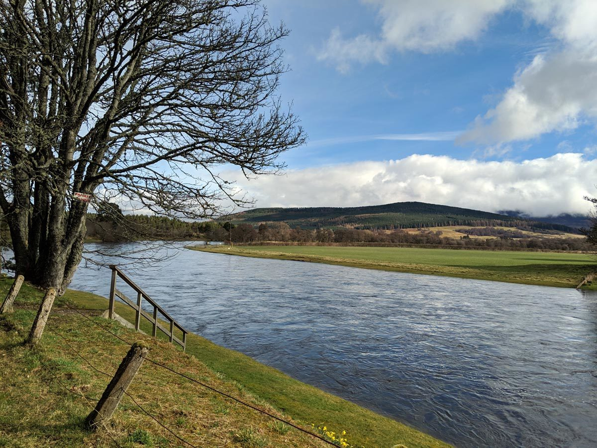 The River Spey, Grantown's world famous river for fishing.